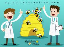 observarea si diagnosticarea albinelor