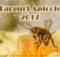 Targuri Apicole 2017 - Apicultura Online