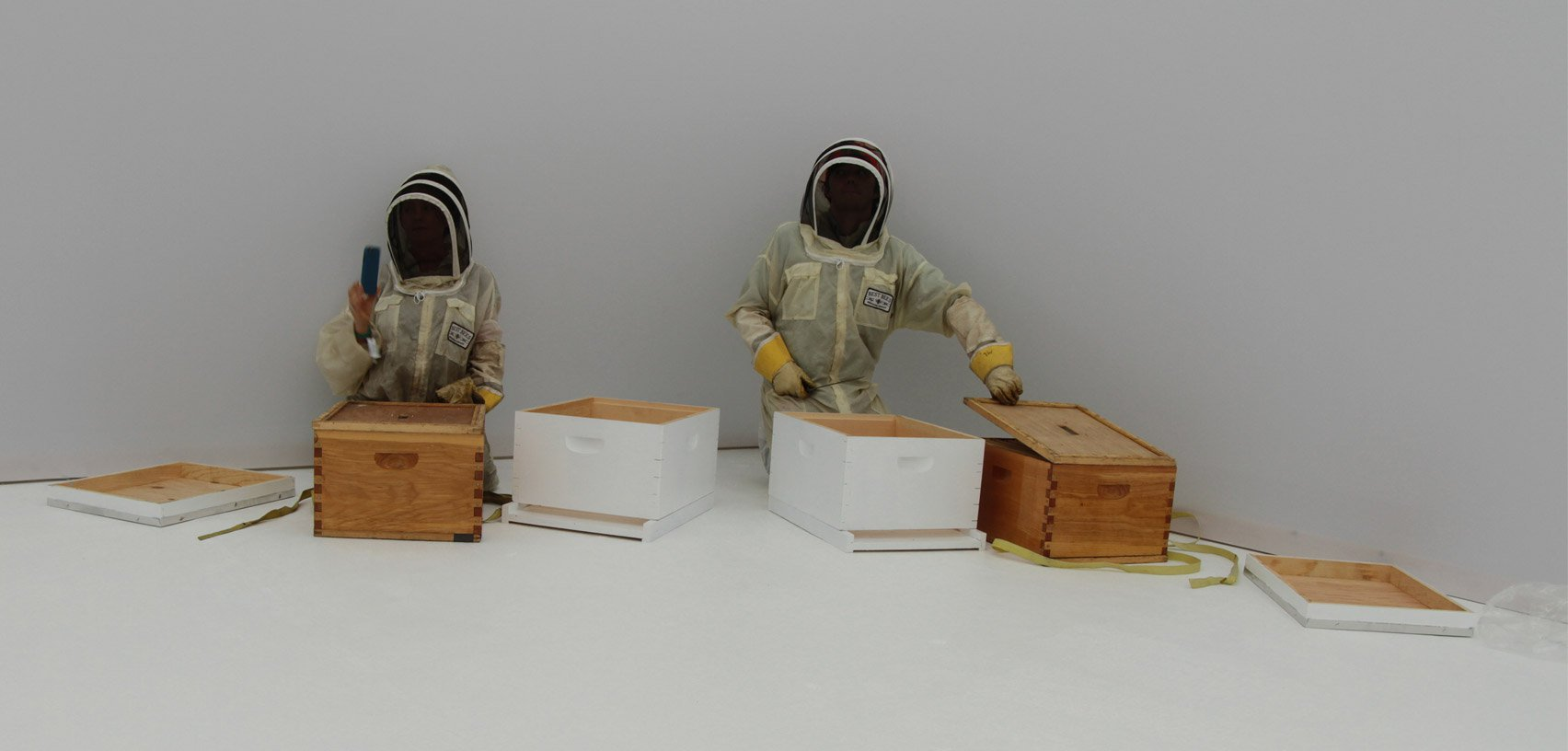 Stupina Artificiala - Synthetic Apiary