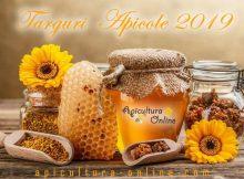 Targuri Apicole 2019